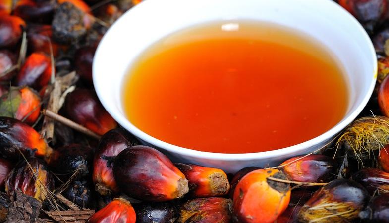 Пальмовое масло в домашних условиях
